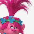 Profilbild von KiMi