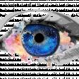 Profilbild von storybound_