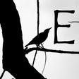 Profilbild von Elizabeth_blackbird