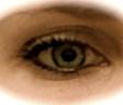 Profilbild von katthi