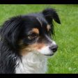 Profilbild von Betty-Kay
