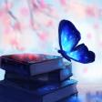 Profilbild von MalliMou1706