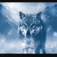 Profilbild von Candance_Reads