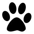 Profilbild von KittyCatina