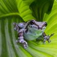 Profilbild von julemaus94