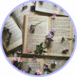 Profilbild von -larasbookworld-