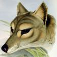 Profilbild von MartinS