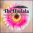 Profilbild von TheUjulala