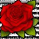 Profilbild von Silversoul