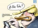 Cover-Bild Alles Fake!
