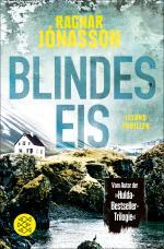 Cover-Bild Blindes Eis