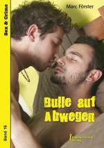 Cover-Bild Bulle auf Abwegen