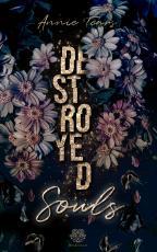 Cover-Bild DESTROYED Souls