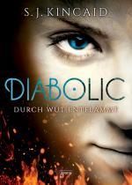 Cover-Bild Diabolic (2). Durch Wut entflammt