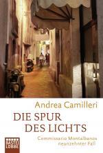 Cover-Bild Die Spur des Lichts