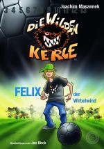 Cover-Bild Die Wilden Kerle - Band 2