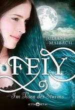 Cover-Bild Feiy - Im Tosen des Sturms