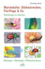 Cover-Bild Marienkäfer, Glühwürmchen, Florfliege & Co.