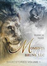 Cover-Bild Moments@Bruns_LLC