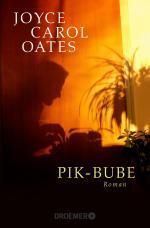 Cover-Bild Pik-Bube