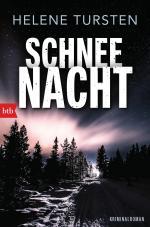 Cover-Bild Schneenacht