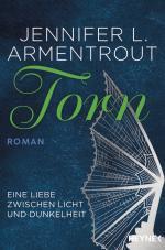 Cover-Bild Torn - Eine Liebe zwischen Licht und Dunkelheit