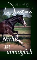 Cover-Bild Winston - Nichts ist unmöglich