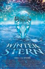 Cover-Bild Winterstern (Anthologie)