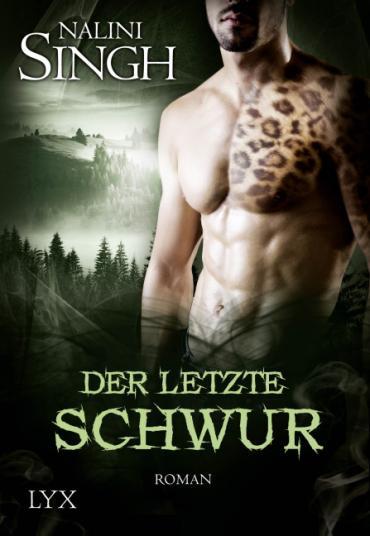 Cover-Bild Der letzte Schwur