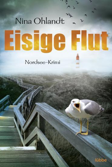 Cover-Bild Eisige Flut
