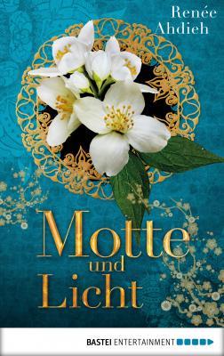 Cover-Bild Motte und Licht