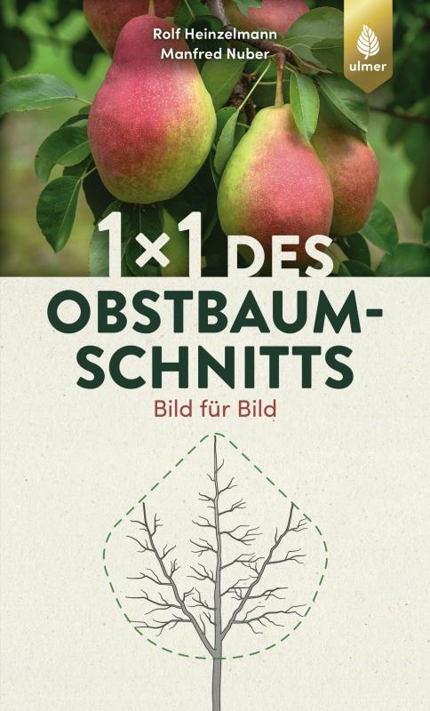 Cover-Bild 1 x 1 des Obstbaumschnitts