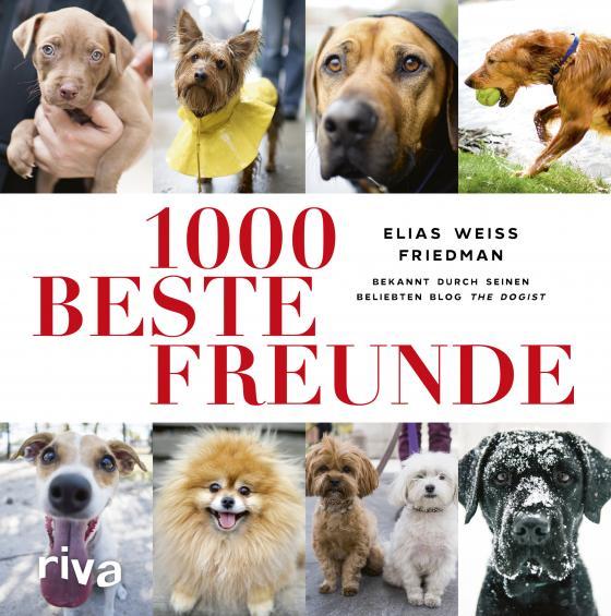Cover-Bild 1000 beste Freunde