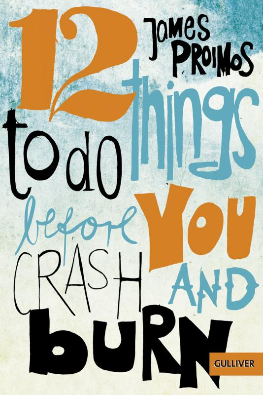 Cover-Bild 12 things to do before you crash and burn