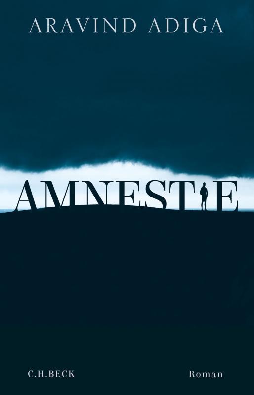 Cover-Bild Amnestie