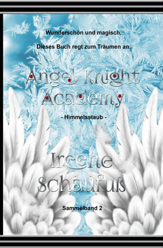 Cover-Bild Angel Knight Academy 2 Himmelsstaub