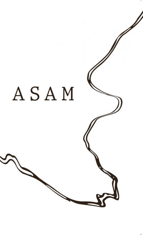 Cover-Bild Asam