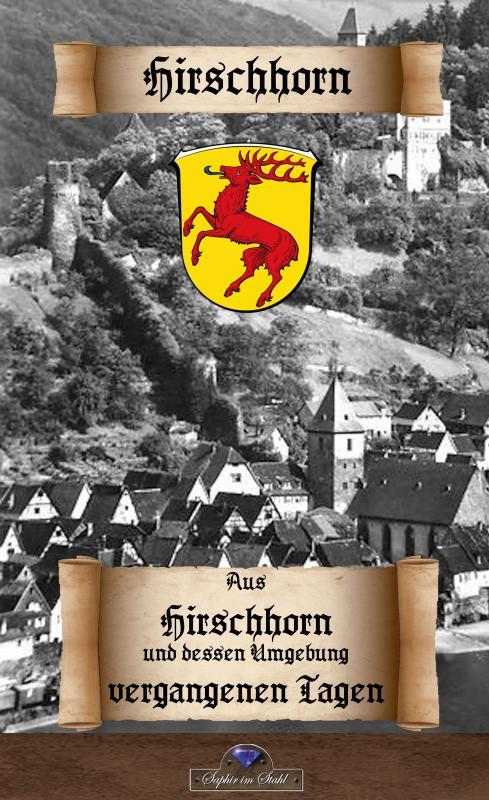 Cover-Bild Aus Hirschhorn und dessen Umgebung vergangenen Tagen