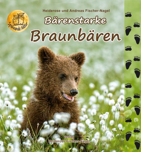 Cover-Bild Bärenstarke Braunbären
