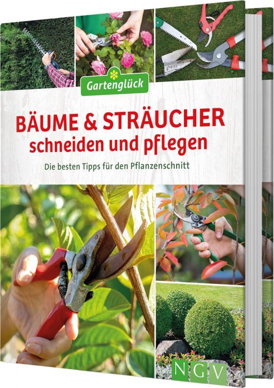 Cover-Bild Bäume und Sträucher schneiden und pflegen