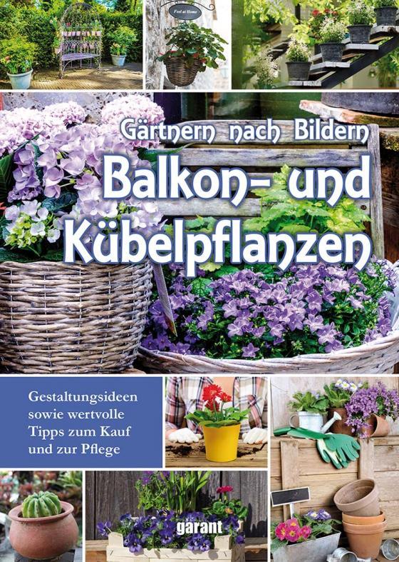 Cover-Bild Balkon- und Kübelpflanzen