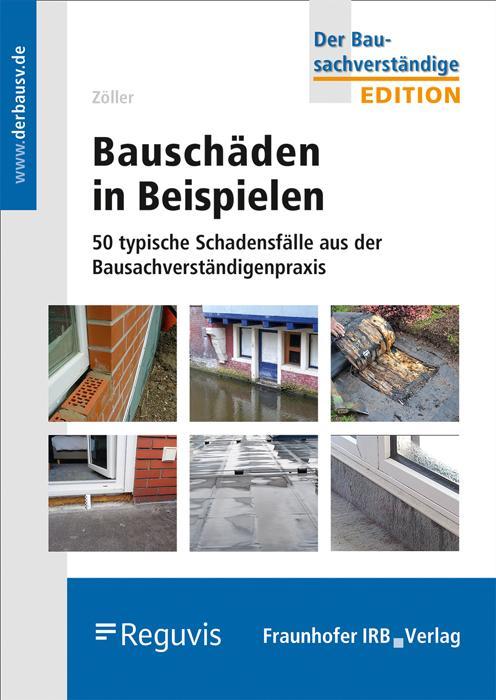 Cover-Bild Bauschäden in Beispielen.
