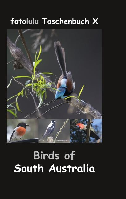 Cover-Bild Birds of South Australia