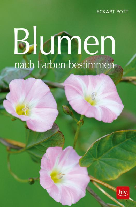 Cover-Bild Blumen nach Farben bestimmen