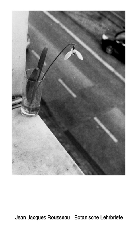 Cover-Bild Botanische Lehrbriefe