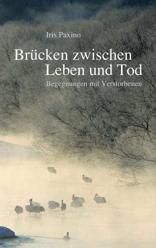 Cover-Bild Brücken zwischen Leben und Tod