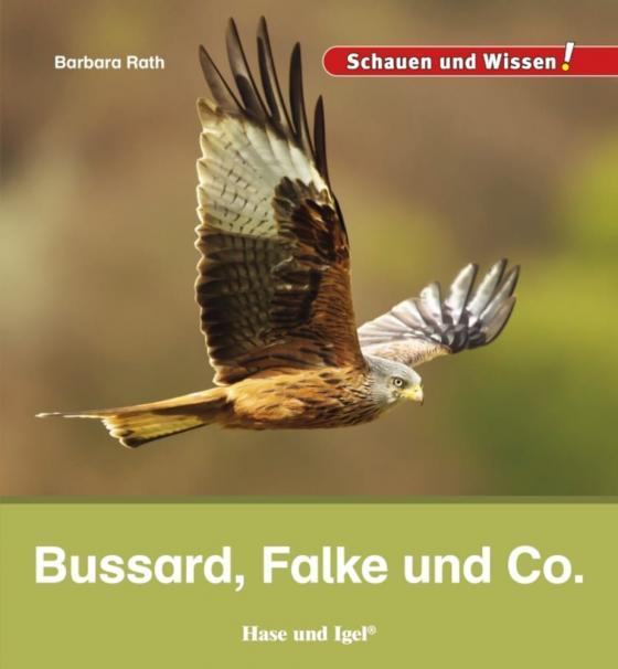 Cover-Bild Bussard, Falke und Co.