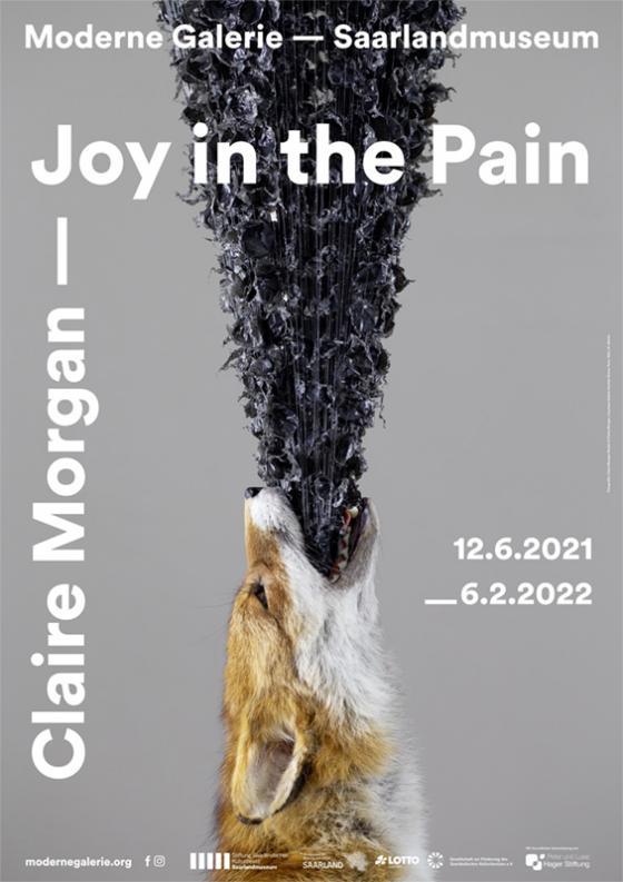 Cover-Bild Claire Morgan