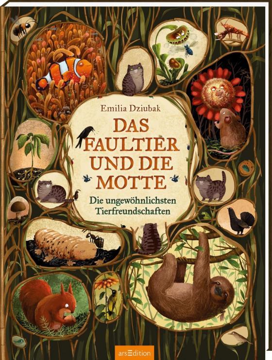 Cover-Bild Das Faultier und die Motte