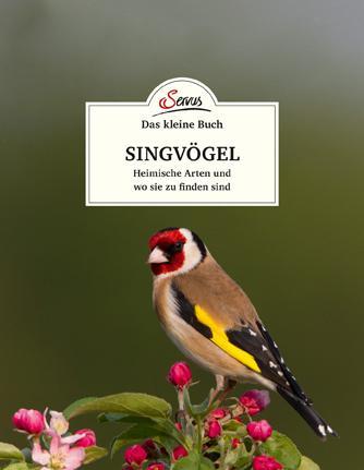 Cover-Bild Das kleine Buch: Singvögel
